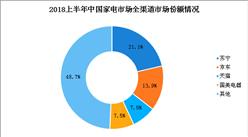 2018上半年中国家电行业市场份额情况分析:苏宁领跑家电行业(图)