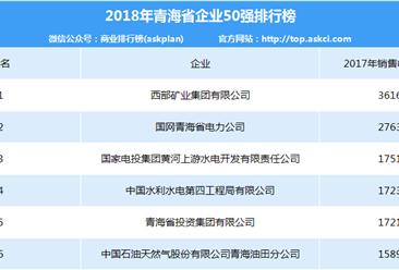 2018年青海省企业50强排行榜