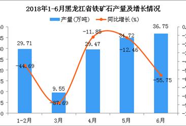 2018年6月黑龙江省铁矿石产量为36.75万吨 同比下降55.75%