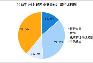 2018上半年全国保险统计数据报告:原保险保费收入超2.2万亿元(图)