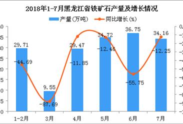 2018年1-7月黑龙江省铁矿石产量为174.46万吨 同比下降46.54%