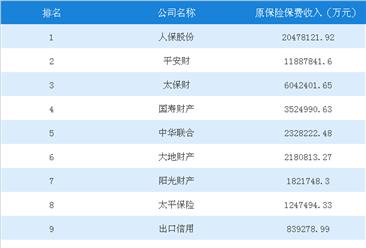 2018上半年中国财产保险原保险保费收入排行榜