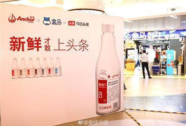 """安佳携手盒马、今日头条共推""""安佳头条新闻瓶""""  中国乳制品消费潜力无限(图)"""