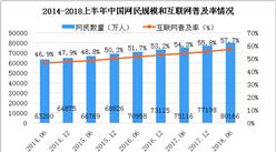 2018上半年中国互联网络发展数据分析:网民规模超8亿人(图表)