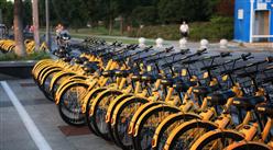 共享單車大潮已退訂單需求萎縮   三大自行車企業業績明顯下滑(圖)