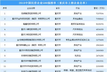 2018年中国民营企业500强排行榜(重庆市上榜企业名单)