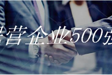 2018年中国民营企业500强排行榜(附完整榜单)