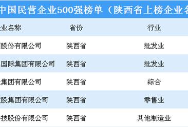 2018年中国民营企业500强排行榜(陕西省上榜企业名单)