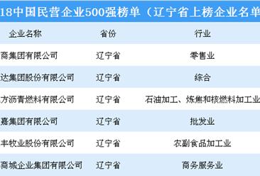 2018年中国民营企业500强排行榜(辽宁省上榜企业名单)