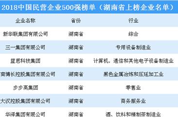 2018年中国民营企业500强排行榜(湖南省上榜企业名单)