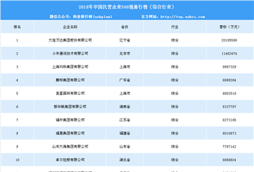 2018年中国民营企业500强排行榜(综合行业)