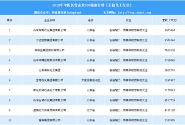 2018年中国民营企业500强排行榜(石油化工行业)