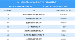 2018年中国企业500强排行榜(湖南篇)