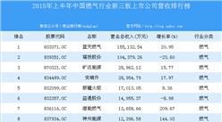 2018年上半年中国燃气行业新三板上市公司营收排行榜