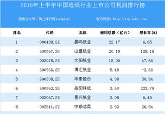 2018上半年中国造纸行业上市公司利润排行榜