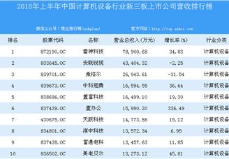 2018年上半年中國計算機設備行業新三板上市公司營收排行榜TOP100