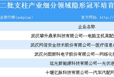 湖北省第二批支柱产业细分领域隐形冠军培育企业名单一览(共251家企业上榜)