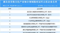 2018年湖北省首批支柱產業細分領域隱形冠軍示范企業名單一覽