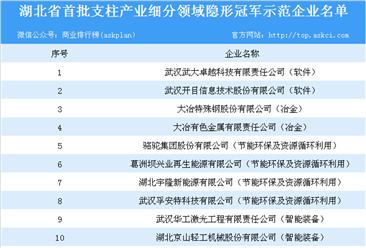 2018年湖北省首批支柱产业细分领域隐形冠军示范企业名单一览