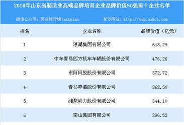 2018年山东省制造业高端品牌培育企业品牌价值50强排行榜