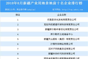 2018年8月新疆产业用地拿地前10名企业排行榜