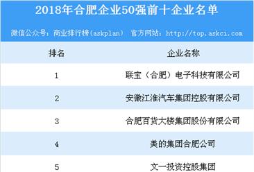2018年合肥企业50强排行榜