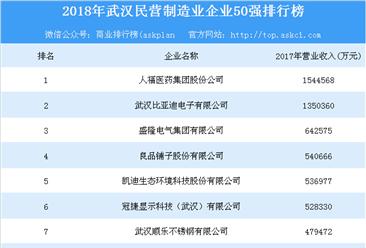 2018年武汉民营制造业企业50强排行榜