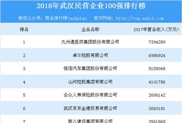 2018年武汉民营企业100强榜单出炉:九州通集团/卓尔控股/恒信汽车位列前三