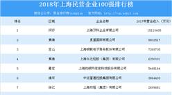 2018年上海民營企業100強排行榜