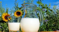 2018年9月国内牛奶市场预测分析:国内生鲜乳收购价将企稳回升