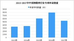 2018年中国物联网银河88元彩金短信专利申请数量分析(附图表)