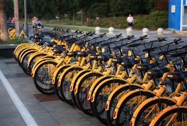 共享单车认购诈骗怎么回事?资本退热后共享单车还能跑多远?(图)