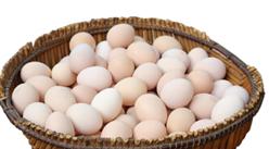 2018年9月25日全国部分地区鸡蛋价格汇总分析:中秋过后,鸡蛋价格整体下降