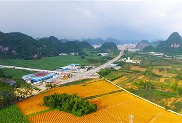 乡村振兴科技支撑行动实施方案出台 打造1000个乡村振兴科技引领示范村(镇)