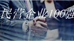 2018年湖南省民營企業100強排行榜