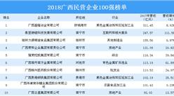 2018年广西民营企业100强榜单出炉:100强企业营收总额达3234.40亿(附榜单)