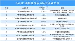 2018广西最具竞争力民营企业名单出炉:象翌微链科技等企业上榜(附详细名单)