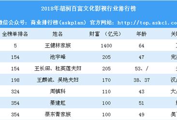 2018年胡润百富文化影视行业排行榜(附全榜单)