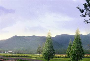金锣集团与融创中国共创绿色康养田园综合体项目  田园综合体发展模式分析