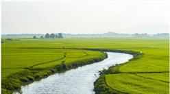 智慧农业九大发展趋势分析:可视化将成为智慧农业发展所趋
