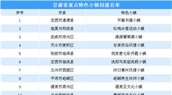 第三批国家级特色小镇申报:甘肃省重点特色小镇创建名单一览(附表)