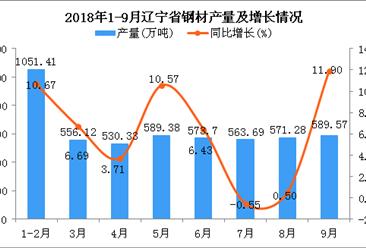 2018年1-9月辽宁省钢材产量为5025.48万吨 同比增长6.54%
