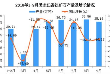 2018年1-9月黑龙江省铁矿石产量为246.38万吨 同比下降46.58%