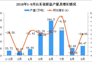 2018年1-9月山东省原盐产量为810.19万吨 同比下降23.37%