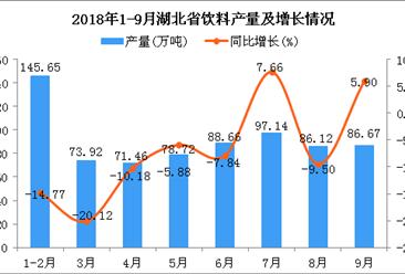 2018年1-9月湖北省饮料产量为728.34万吨 同比下降7.81%