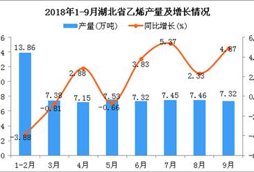 2018年1-9月湖北省乙烯产量同比增长1.07%