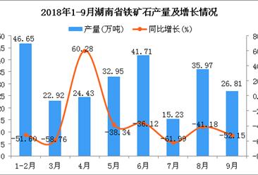 2018年1-9月湖南省铁矿石产量为246.67万吨 同比下降49.6%