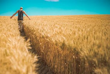 提升乡村旅游要立足三农  促进旅游消费提质扩容(图)