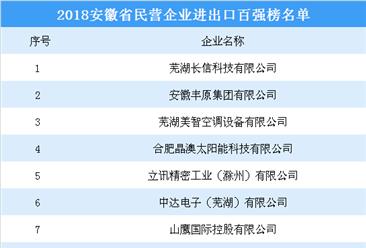 2018年安徽省民营企业进出口百强名单(附全名单)