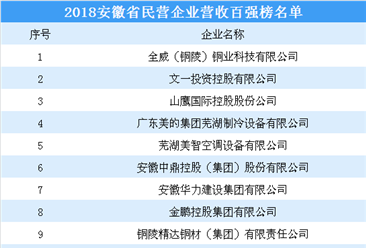 2018年安徽省民营企业营收百强榜名单出炉(附完整榜单)